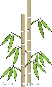 Clip Art Of A Bamboo Stand