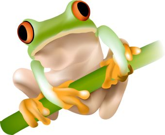 Clip Art Of A Green Tree Frog With Orange Eyes Sitting On A Green Twig