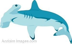 Clip Art Of A Hammerhead Shark