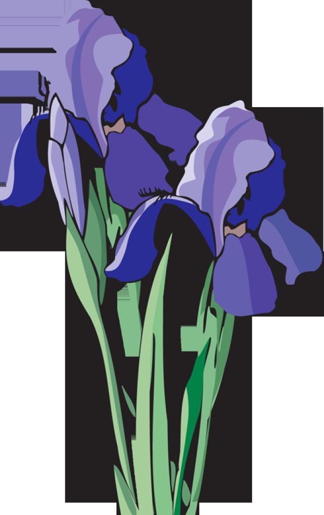 Clip Art Of Beautiful Flowers