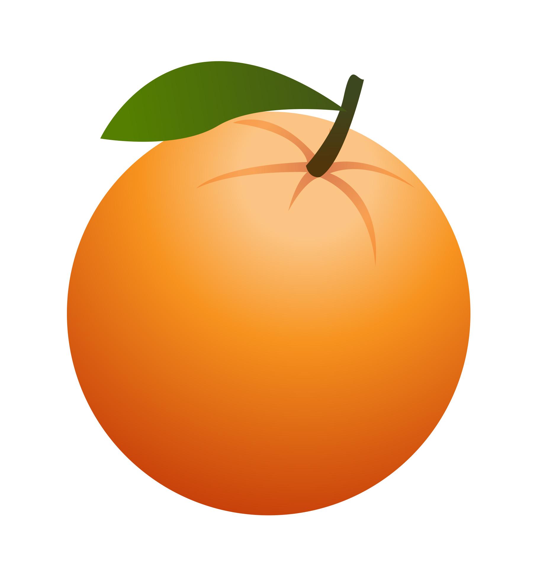 Clip Art Orange