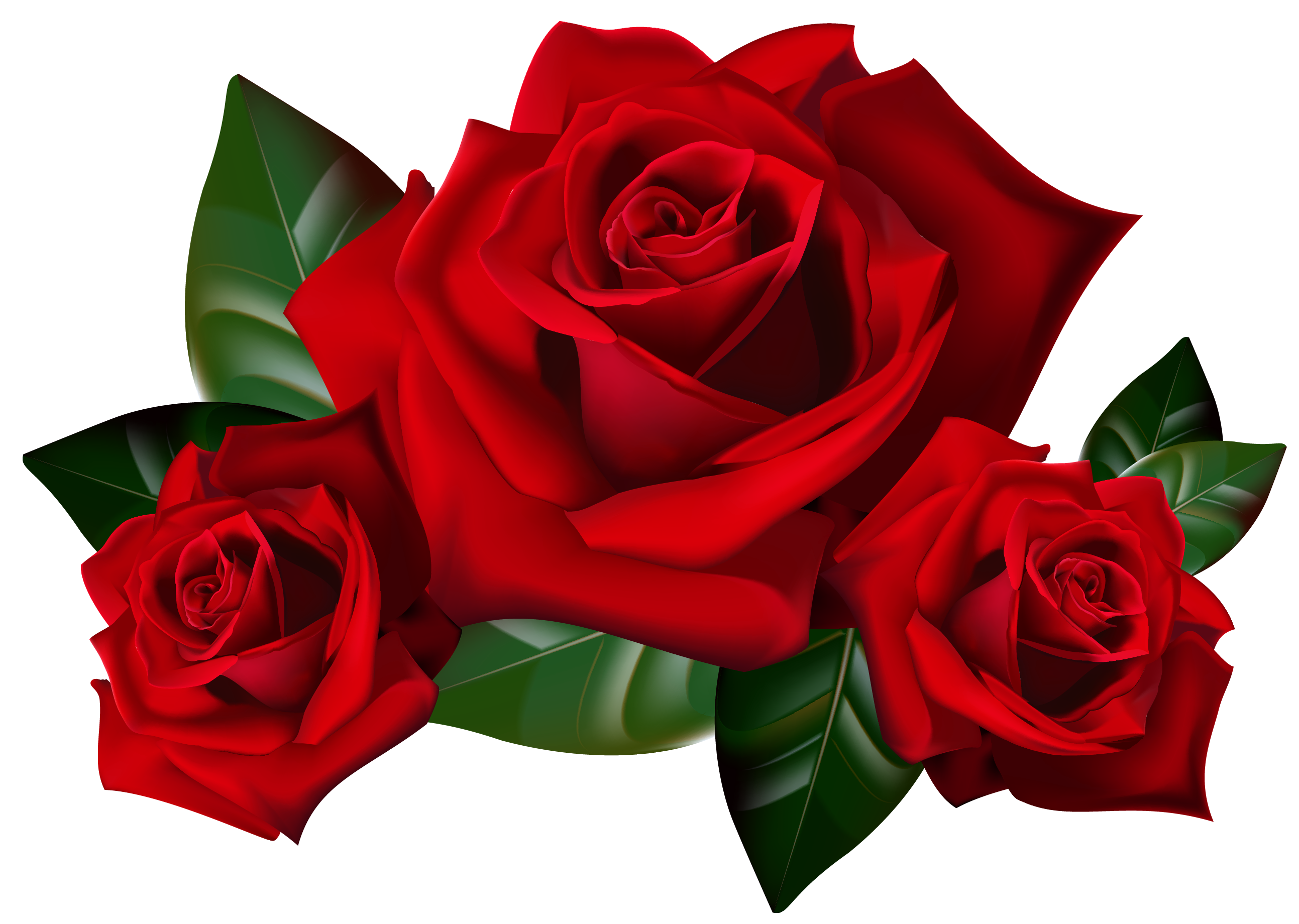 Clip Art Red Roses Cliparts Co