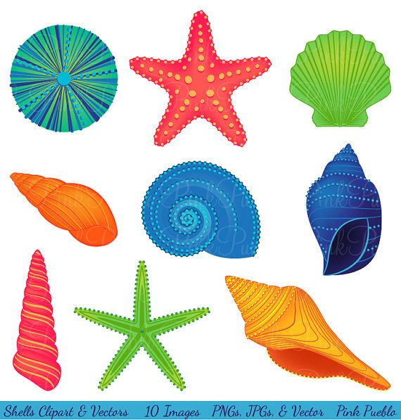 Clip Art Seashells Clipart seashells on the beach clipart clipartfox  72b042cc732ecb7a400a2c8700a74f