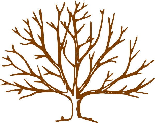 Clip Art Tree No Leaves | Clipart library - Free Clipart Images