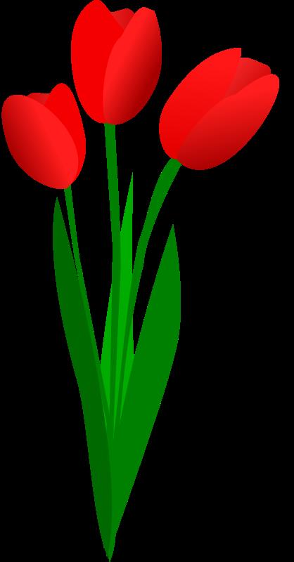 Clip Art Tulip