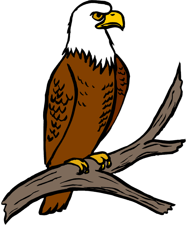 clipart eagle