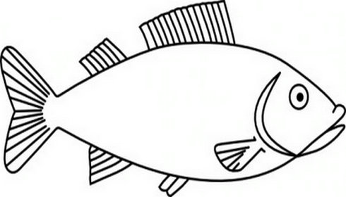 Clipart Fish Outline | Clipart library - Free Clipart Images