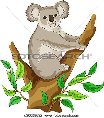 Clipart - native bear, vertebrate, koala, land animal, mammal, wild animal