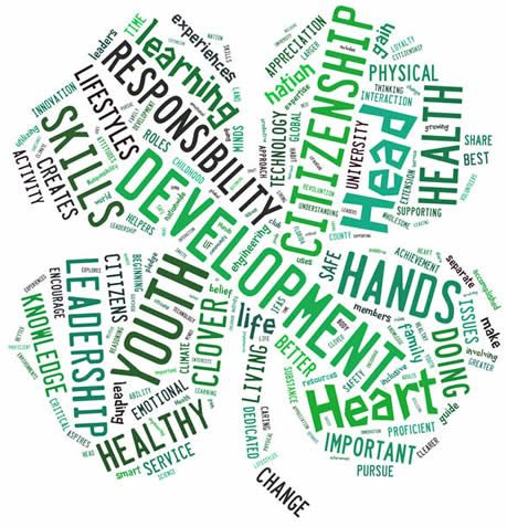 Clover Word Cloud