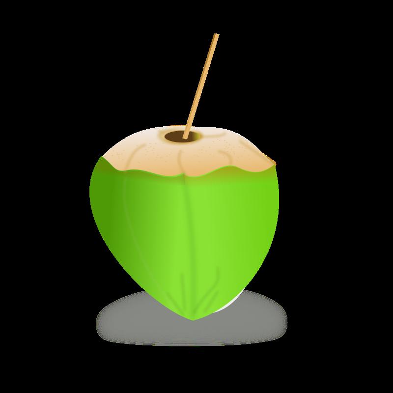 Coconut Clipart-hdclipartall.com-Clip Art800