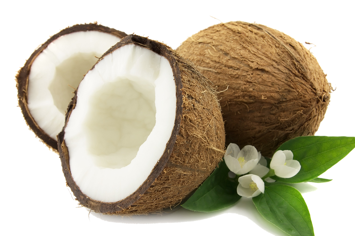 Coconut Png PNG Image