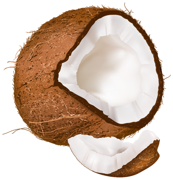 Open Coconut PNG Clipart Image