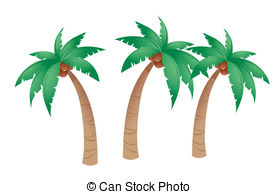 ... Coconut tree isolated in white background