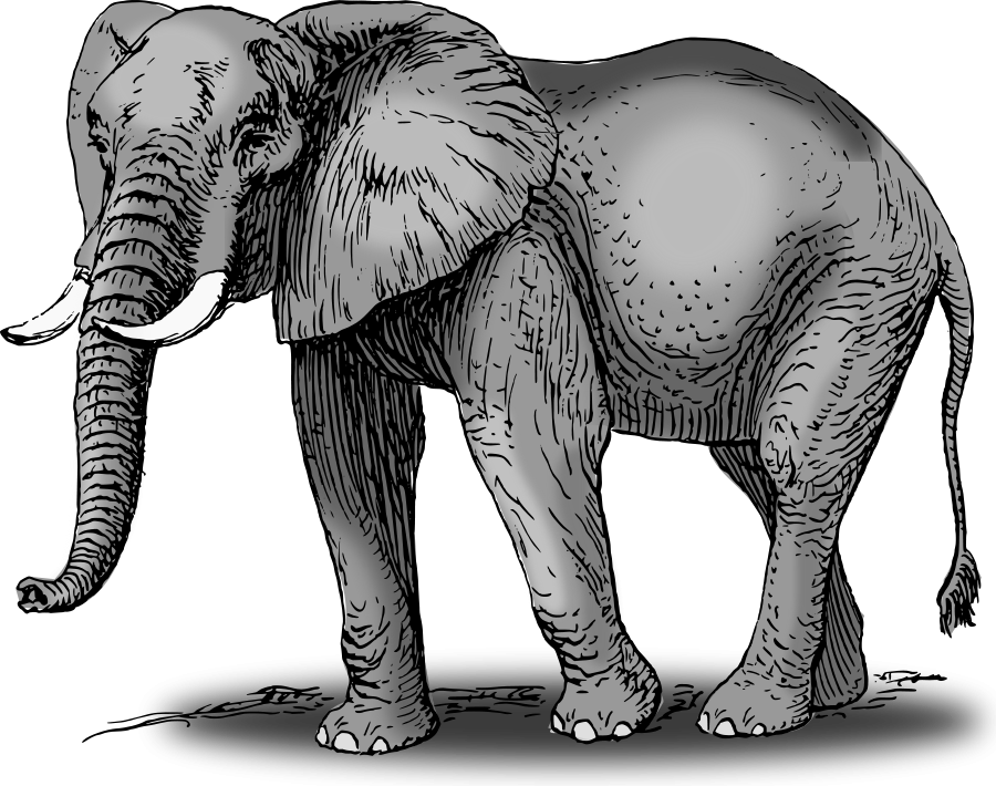 Colored Elephant Clipart