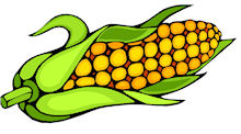 Corn clipart clipart cliparts for you 3