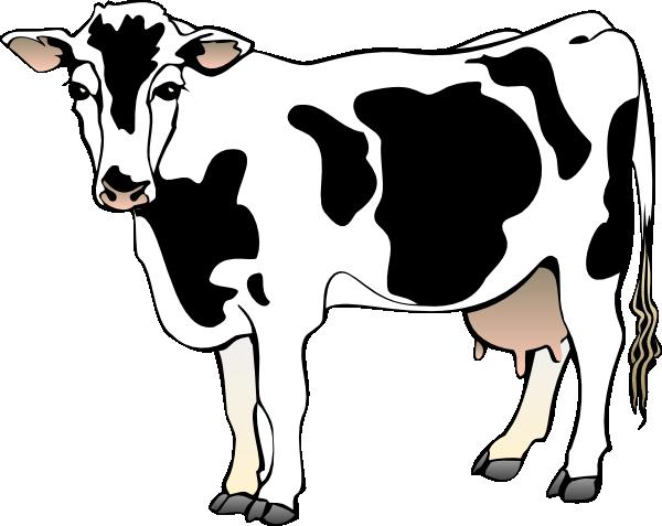 cow clipart | Cow 11 clip art - vector clip art online, royalty free u0026  public domain