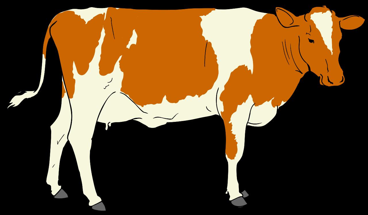 File:Cow clipart 01.svg
