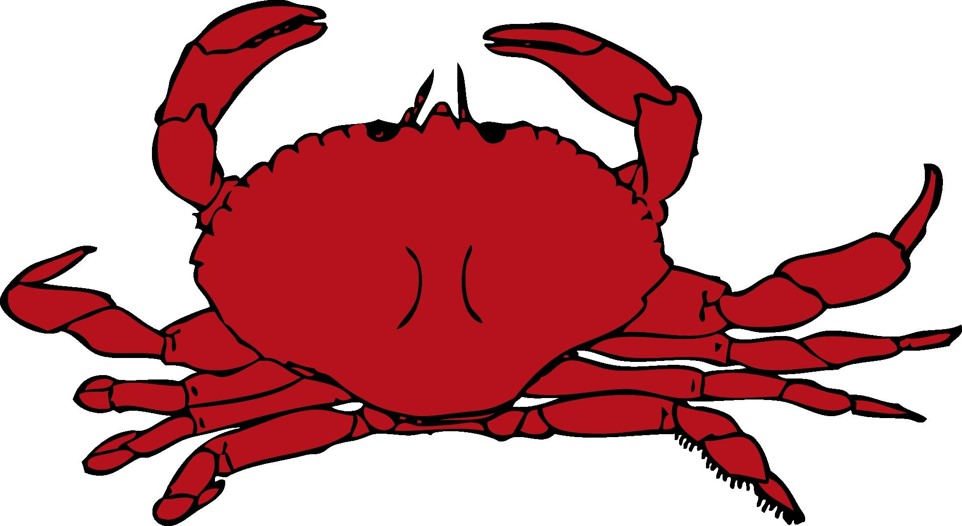 Clipart Sumptuous Crab Clipart Crab Clipart Clipart Spectacular Idea