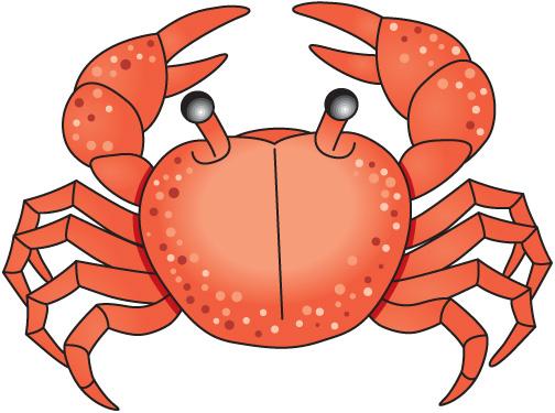Sea Crab Clipart #1