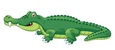 Free crocodile clipart image