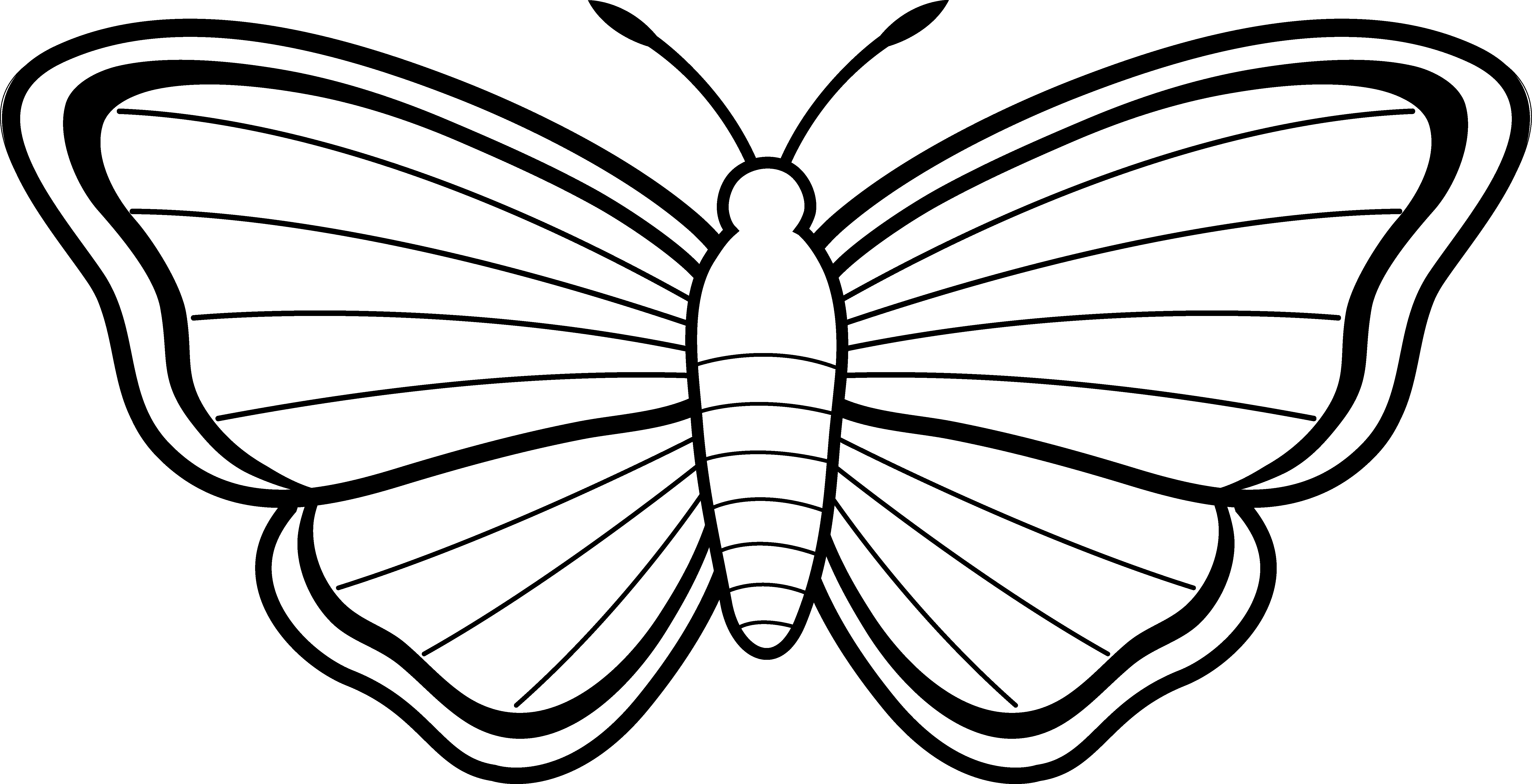 ... Cute Butterfly Line Drawing | Free Download Clip Art | Free Clip .