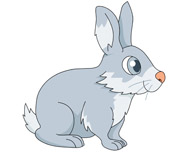 cute little rabbit on grass. Size: 54 Kb