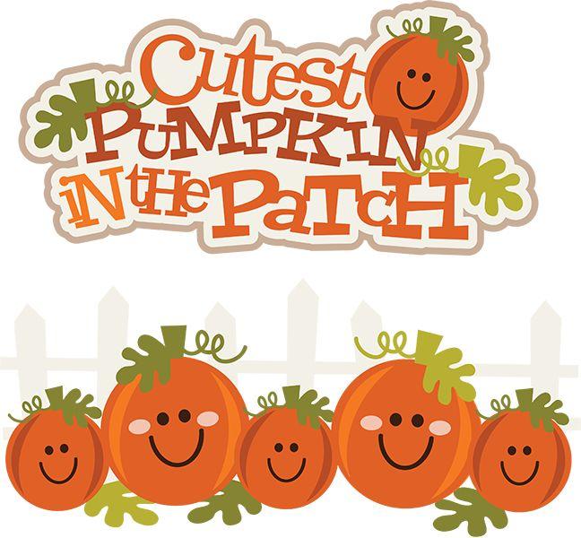 Cutest pumpkin in the patch .