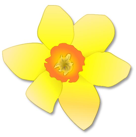 Daffodil Bloom Http Www Wpclipart Com Plants Flowers Daffodil