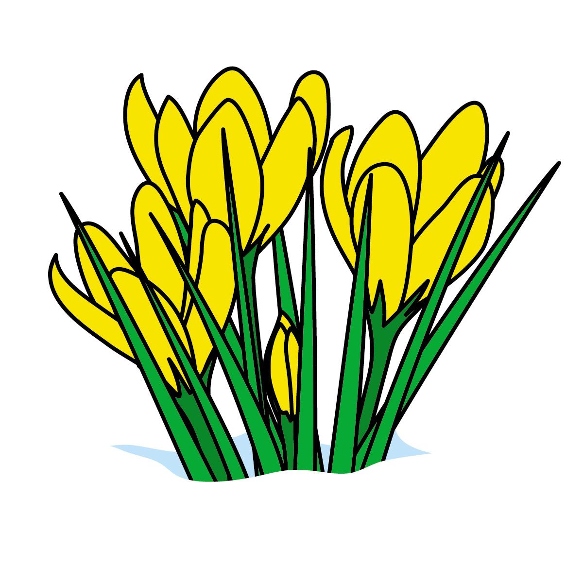Daffodil Clipart - clipartall; Daffodil Clipart - clipartall; Daffodils Clipart | Free Download Clip Art | Free Clip Art | on .