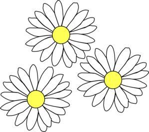 Daisy Clip Art 38