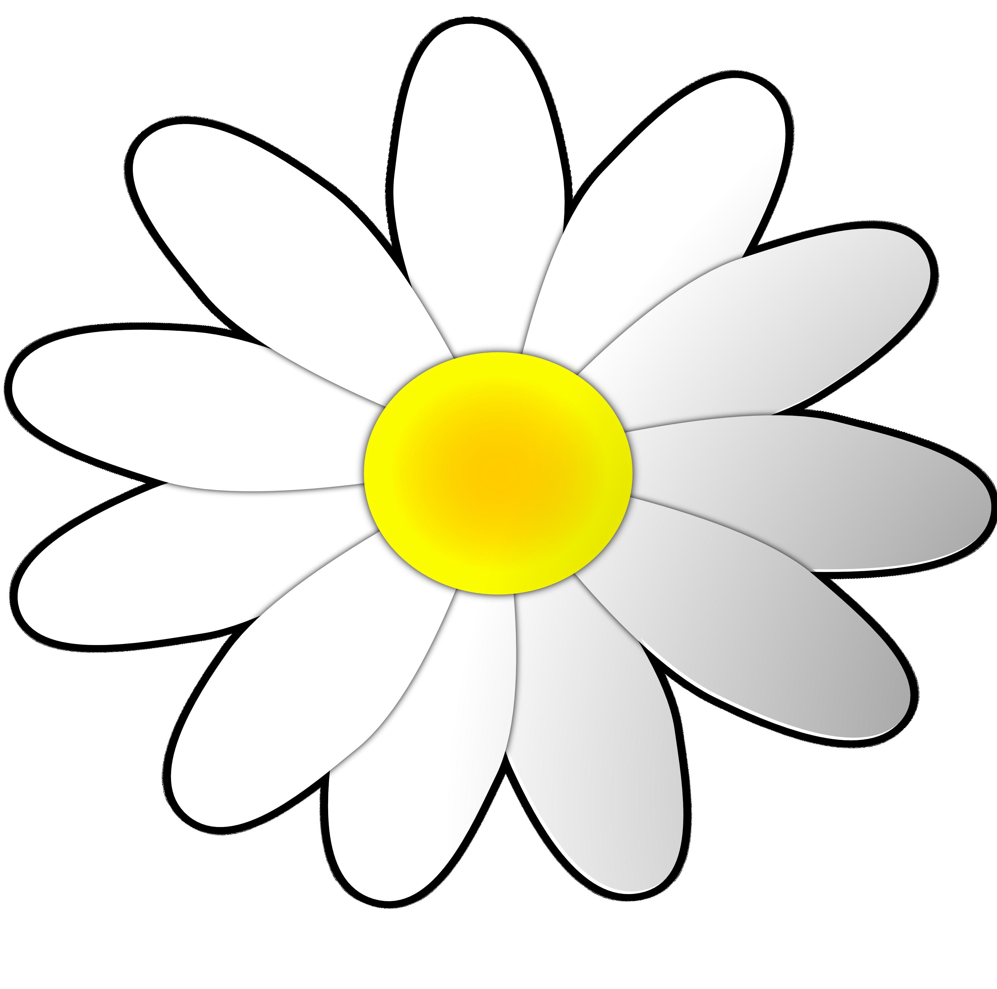 Daisy Image Clip Art