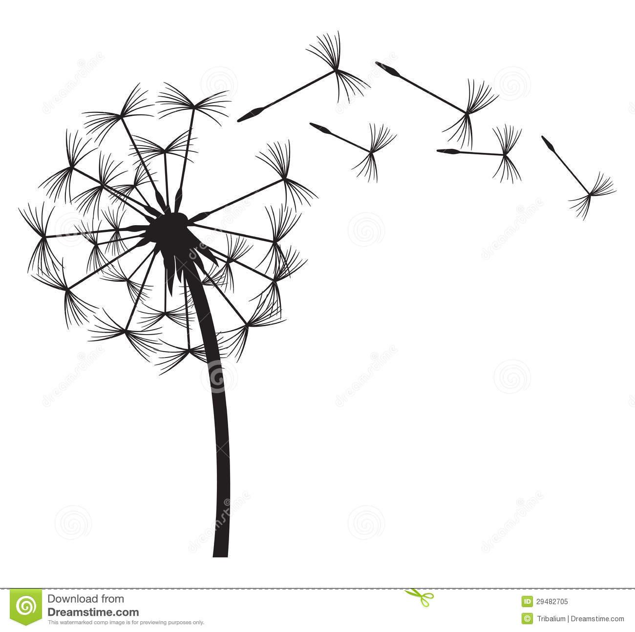 Dandelion In The Wind Vector Dandelion