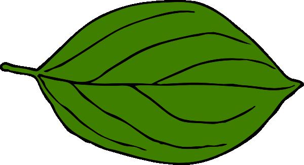 Dark Green Leaf Clipart