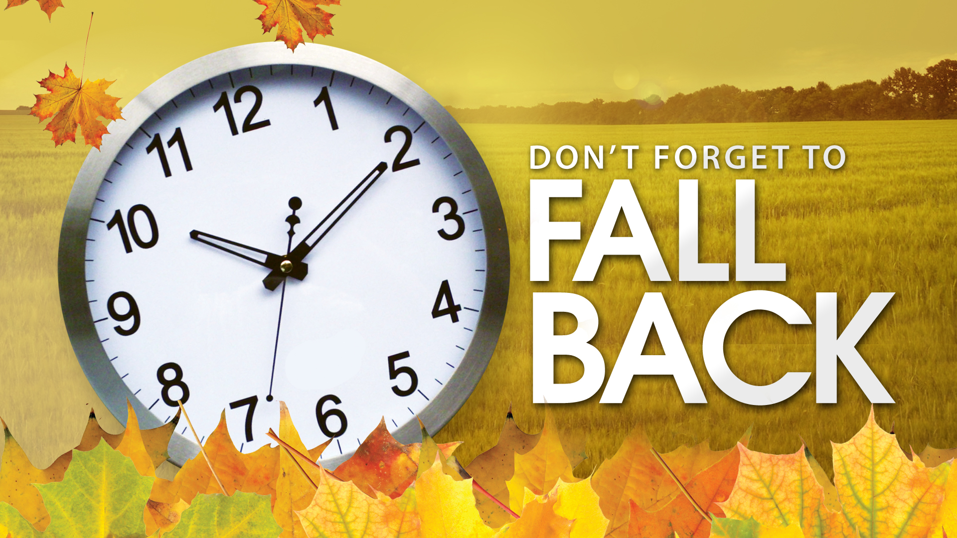 Daylight Savings Time Is Scheduled For This Sunday November 2nd