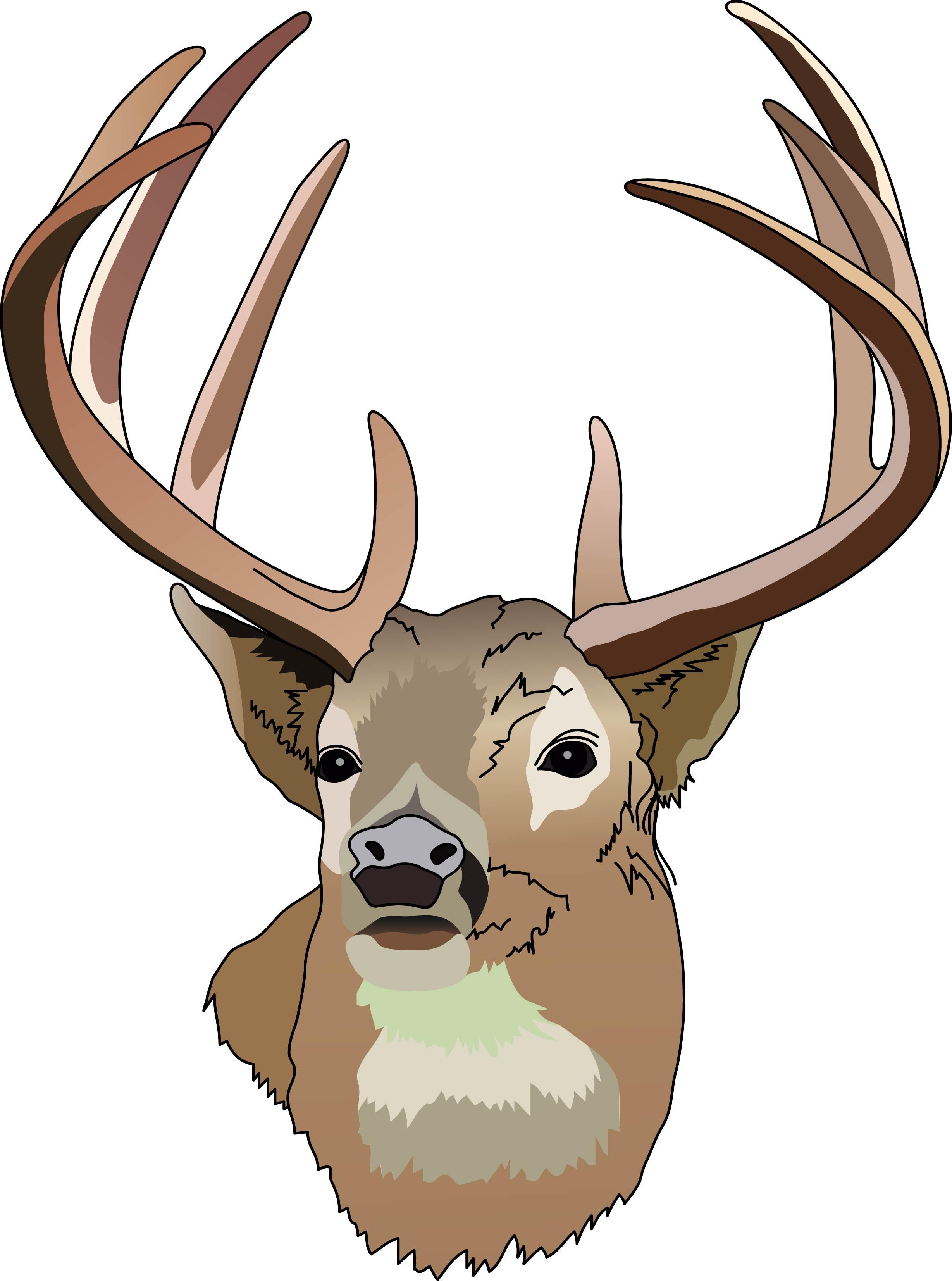 Deer buck clipart black and .