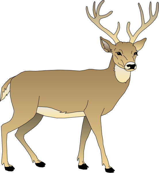 Deer Clipart-Clipartlook.com-553