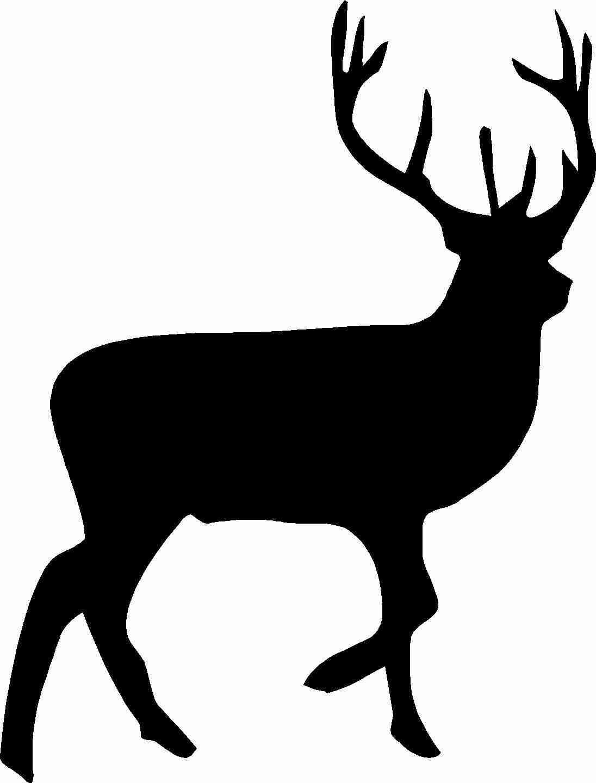 1096x1440 Free Deer Clipart