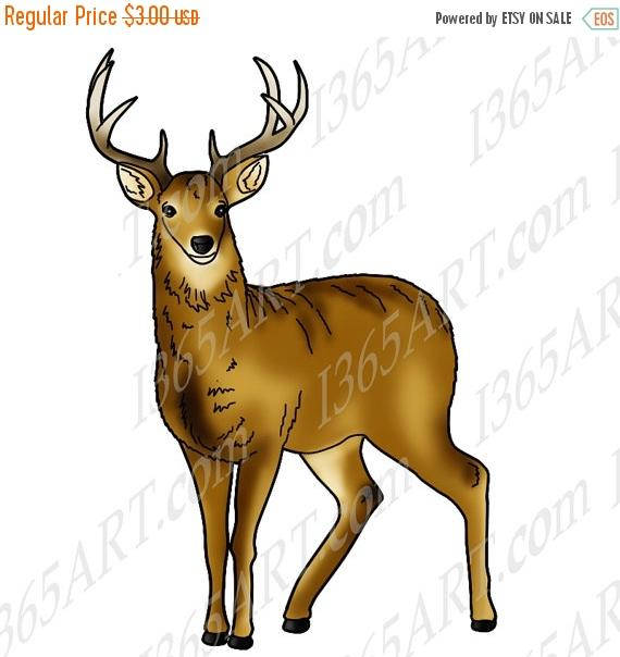 50% OFF Deer Clipart, Deer clip art, Wildlife clipart, Deer graphic,  Invitations, Scrapbooking, coloring page, Digital Stamp, JPEG PNG from  I365Art on Etsy ClipartLook.com