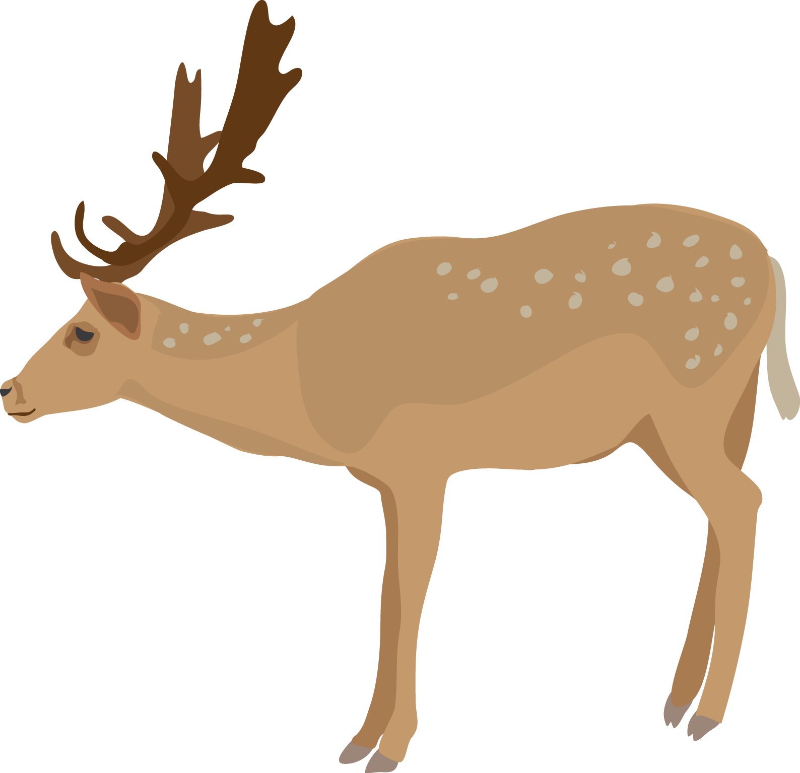 Cute baby deer clipart free images