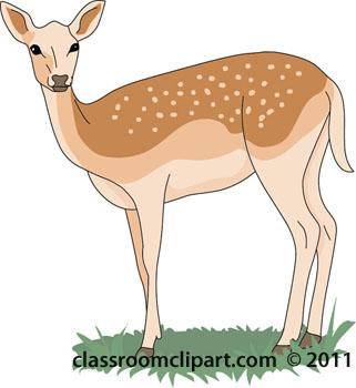 Deer Size: 44 Kb
