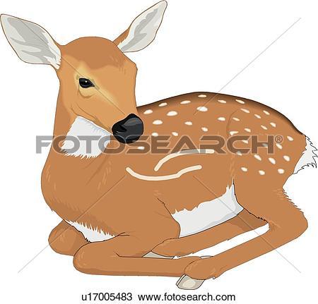 Deer. ValueClips Clip Art