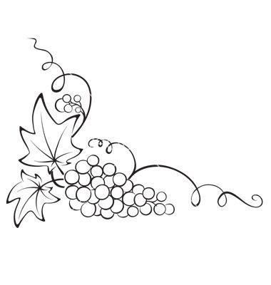 Design element - grapevine vector 831735 - by imagination13