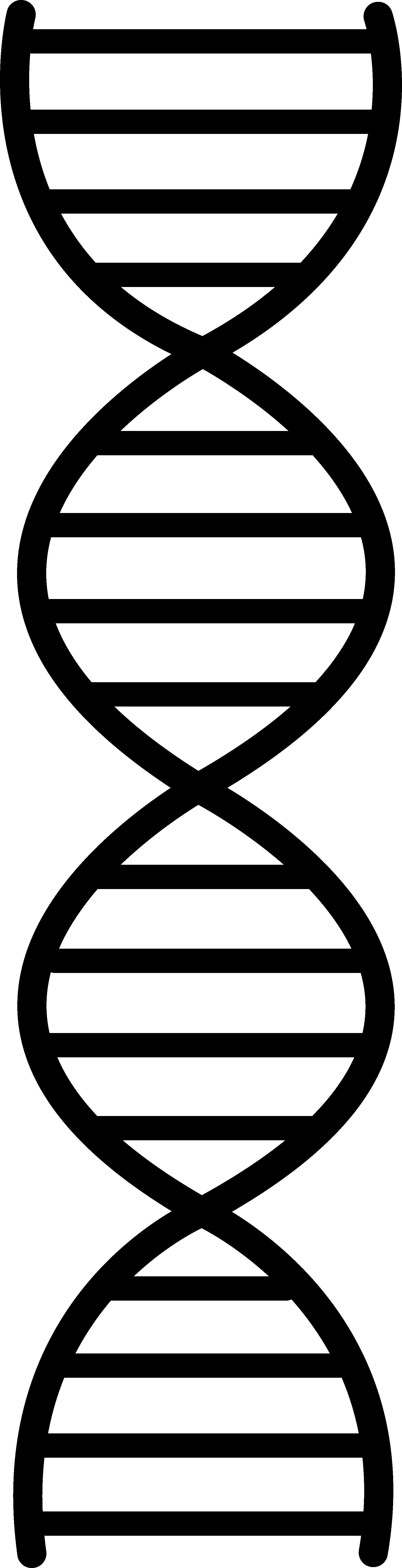 Dna Symbol Clipart