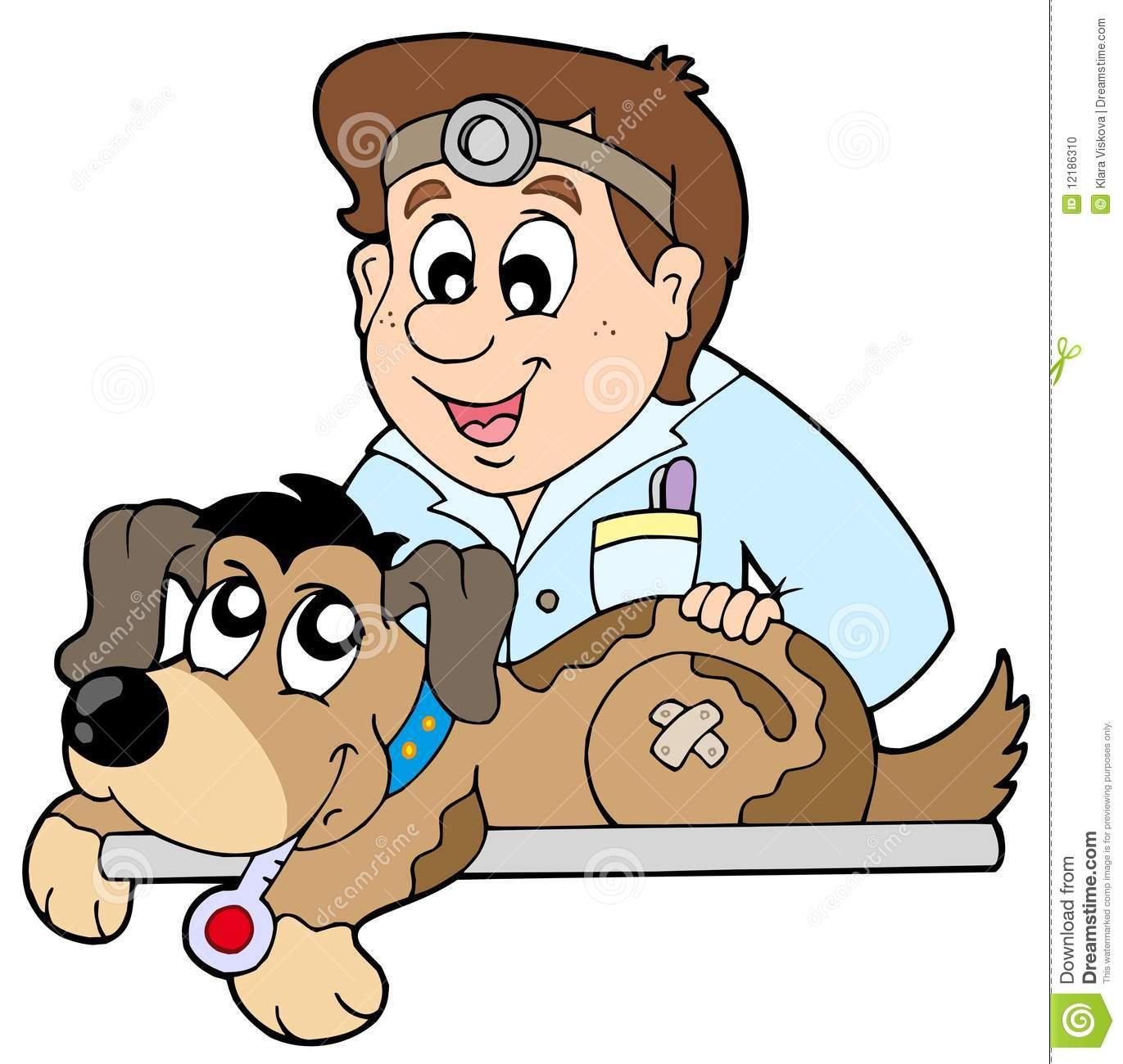 Dog at veterinarian Stock Photo