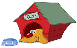 Dog in doghouse Stock .