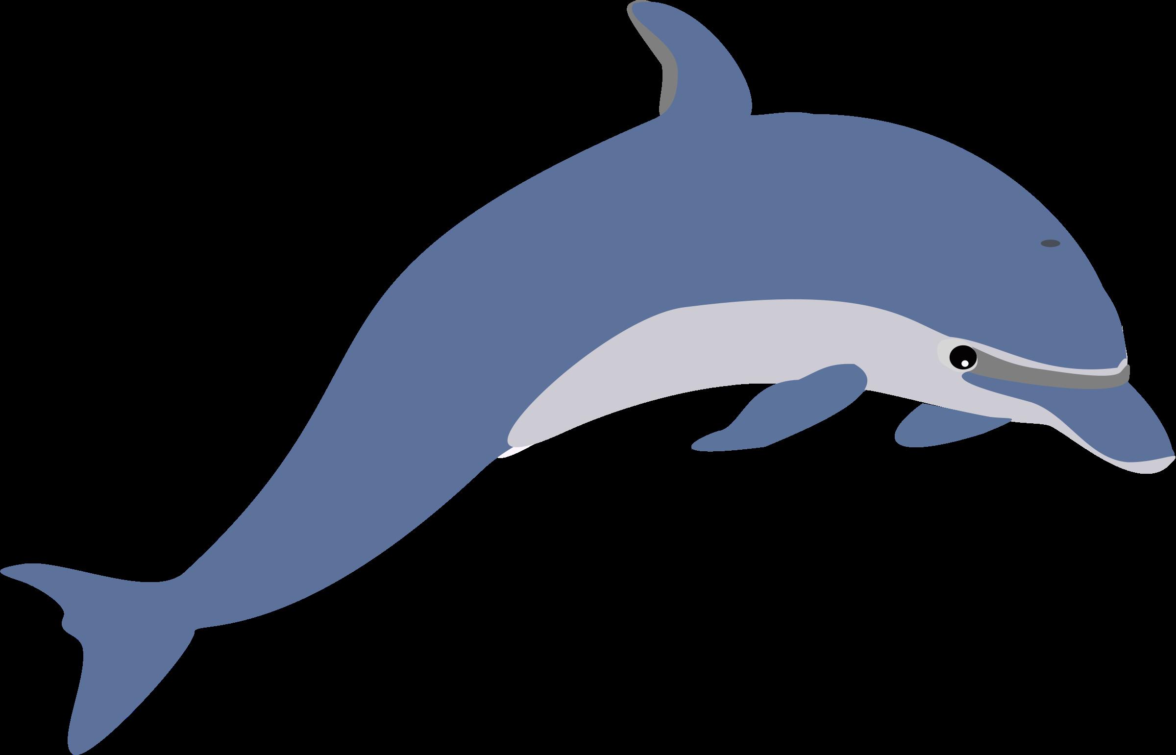Dolphin Clip Art