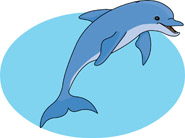 dolphin jumping out of water. Size: 60 Kb