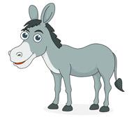 donkey eating grass. Size: 63 Kb