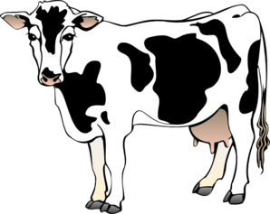 Download Dairy Cow Clipart