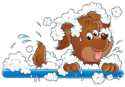 Download Pet Grooming Clipart. 38483e4d9df36bf56a90f91e6b5b9f .